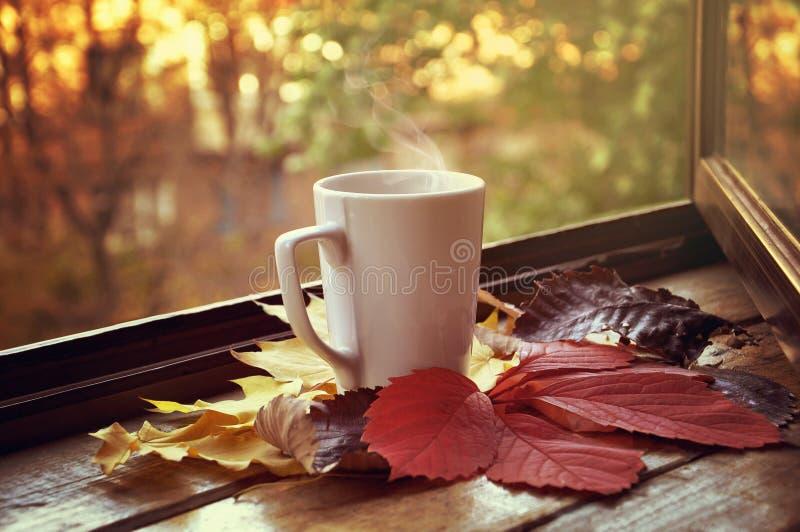Heiße Tasse Tee lizenzfreies stockbild