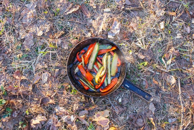 Heiße Wanne mit einem Teller von roten Pfeffern und von grünen Gurken auf dem Gras im Wald lizenzfreies stockbild
