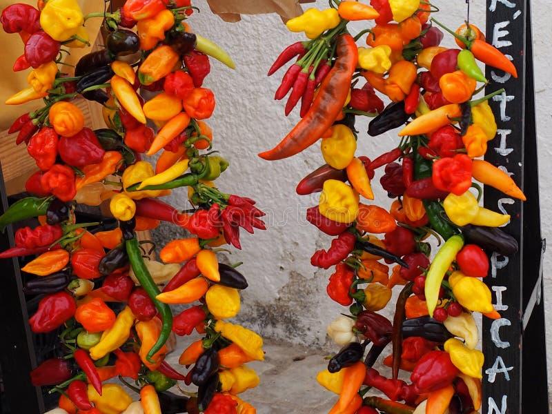 Heißer Chili Peppers At Market In Loule Portugal stockbild