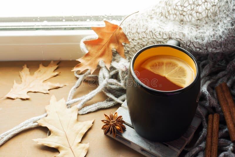 Heißer Tee der Schale mit Zitrone auf dem Woolen Plaid des Fensterbretts Des Herbstes Leben noch Es ` s, das drau?en regnet Kopie lizenzfreie stockfotografie