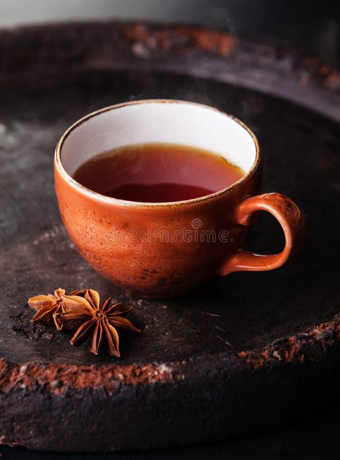 Heißer Tee mit Gewürzen lizenzfreie stockbilder