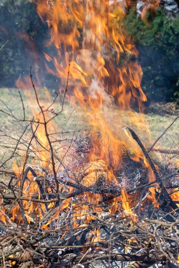 Heißes Feuer, wenn brennend, bürsten lizenzfreie stockbilder