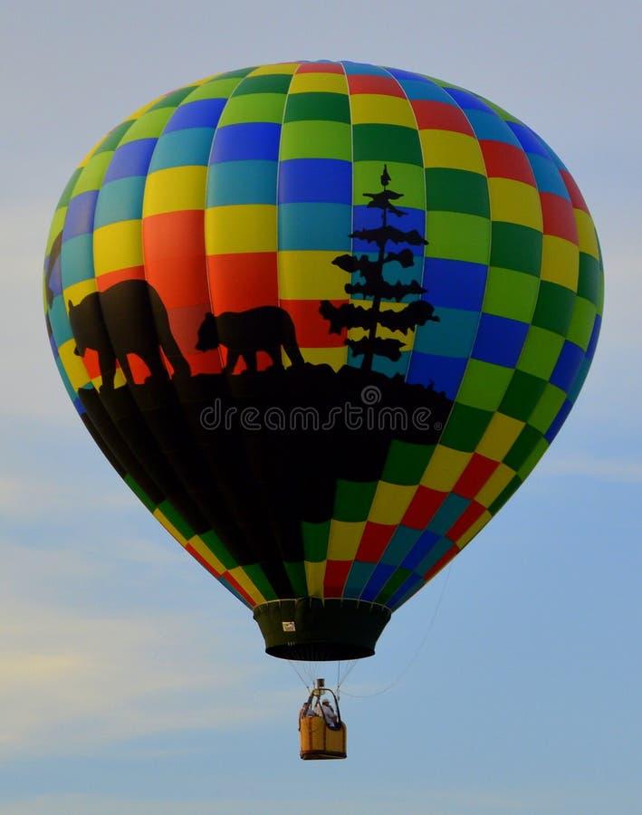 Heißluft-Ballon 6 lizenzfreies stockfoto