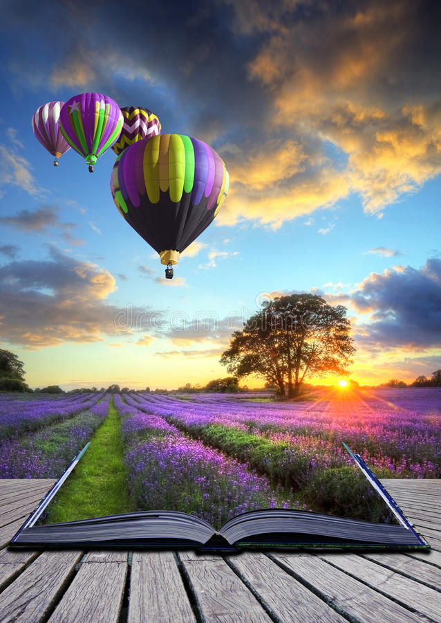 Heißluft Hinauftreiben von Aktienkursen Lavendellandschaftsmagiebuch stockfotos