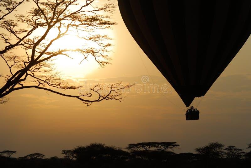Heißluftballon, der über Savanne bei Sonnenaufgang, Nationalpark Serengeti, Tansania fliegt lizenzfreie stockbilder