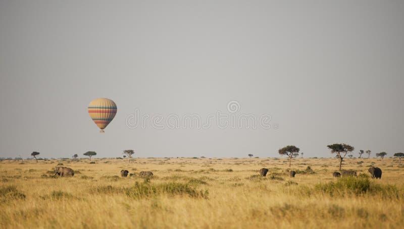 Heißluftballon in Kenia lizenzfreie stockfotos
