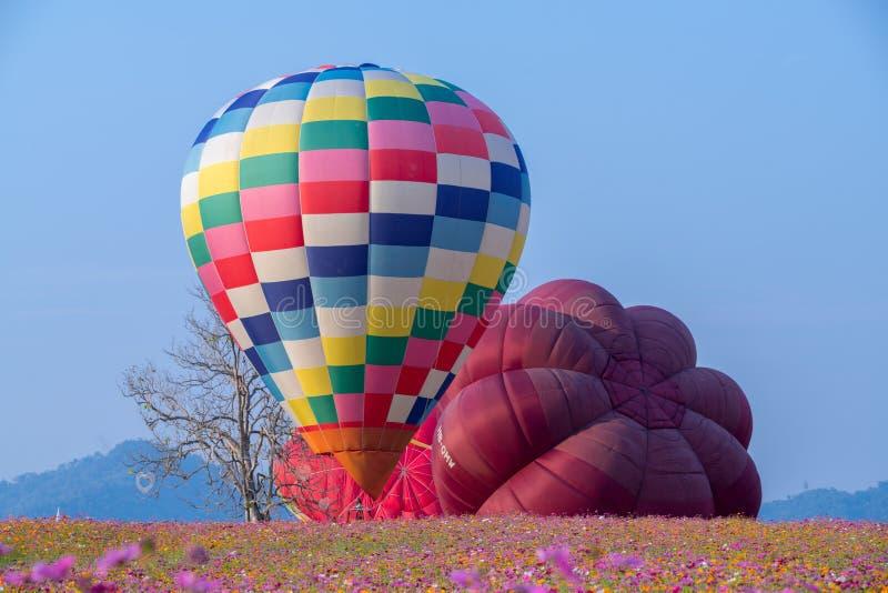 Hei?luftballon photgrphed beim Bealton, VA-Flugwesen-Zirkus-Flugschau stockfoto