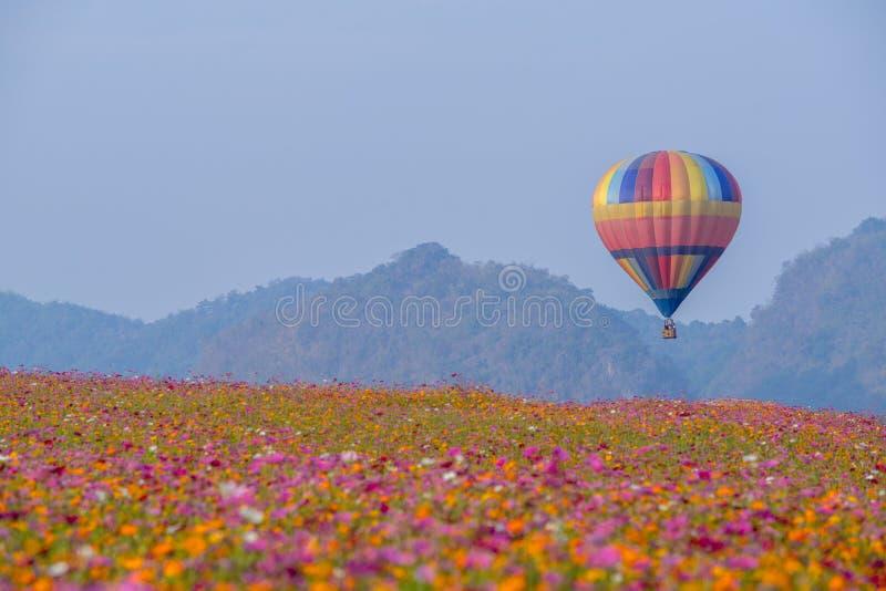 Hei?luftballon photgrphed beim Bealton, VA-Flugwesen-Zirkus-Flugschau lizenzfreie stockfotos