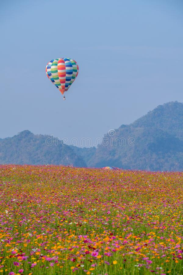 Hei?luftballon photgrphed beim Bealton, VA-Flugwesen-Zirkus-Flugschau stockfotografie