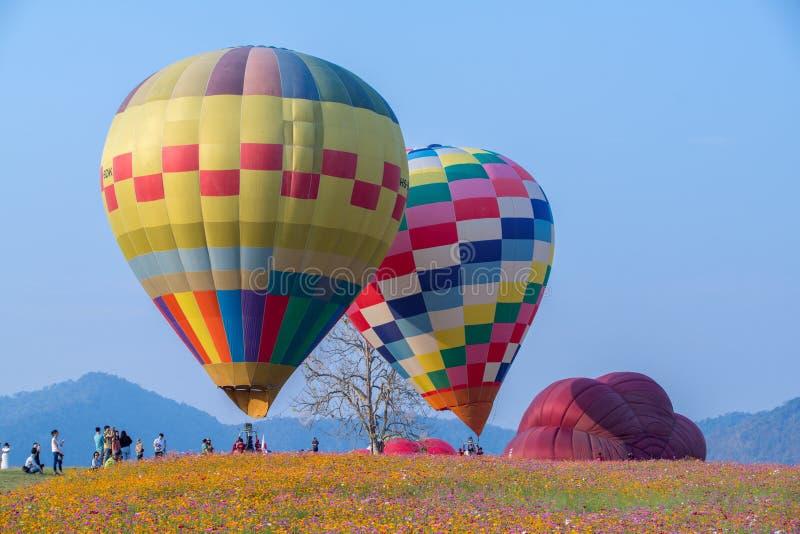 Hei?luftballon photgrphed beim Bealton, VA-Flugwesen-Zirkus-Flugschau lizenzfreies stockbild