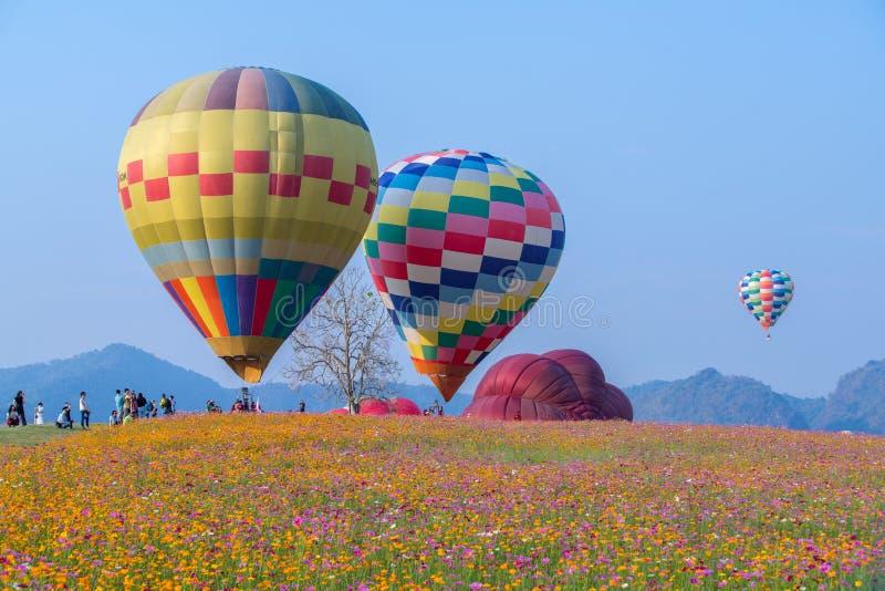 Hei?luftballon photgrphed beim Bealton, VA-Flugwesen-Zirkus-Flugschau stockfotos