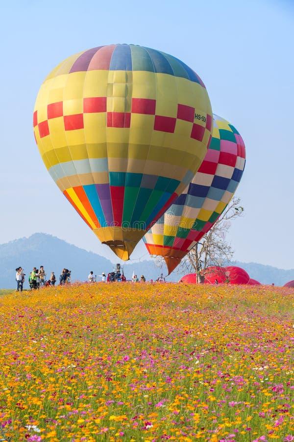 Hei?luftballon photgrphed beim Bealton, VA-Flugwesen-Zirkus-Flugschau lizenzfreie stockfotografie
