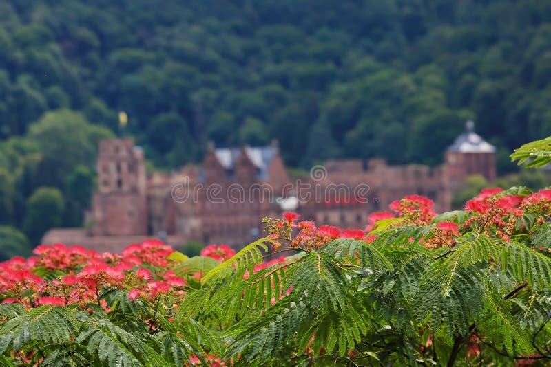 Heidelberg est une ville allemande photos libres de droits