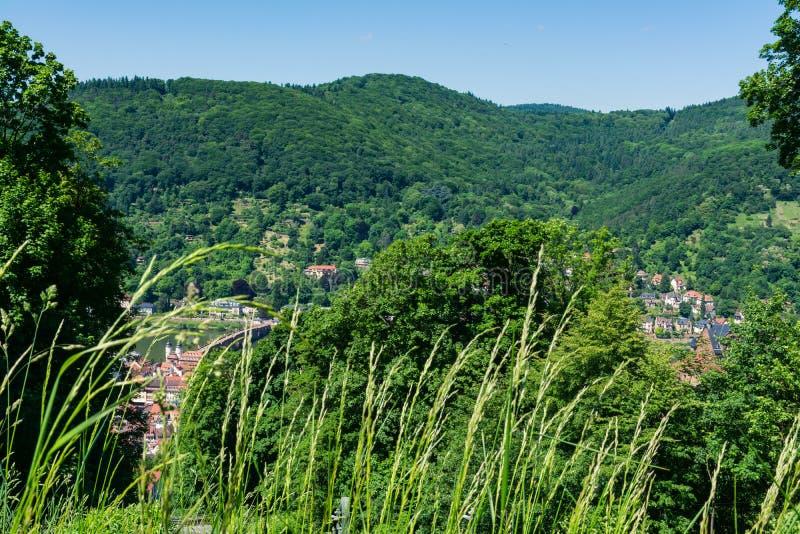 Heidelberg widok nad Baden-Wuerttemberg Neckar rzeki krajobrazem E obrazy stock