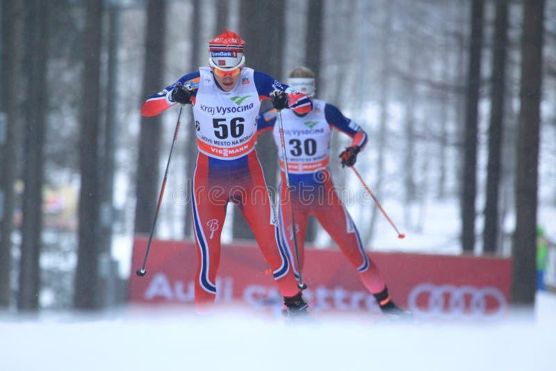 Heidi Weng - διαγώνιο να κάνει σκι χωρών στοκ φωτογραφία