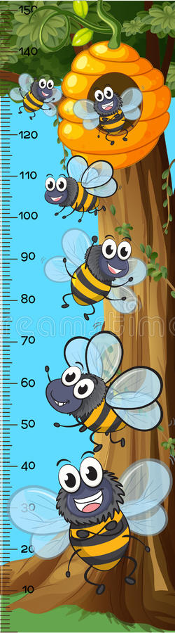 Height measurement chart bees flying vector illustration