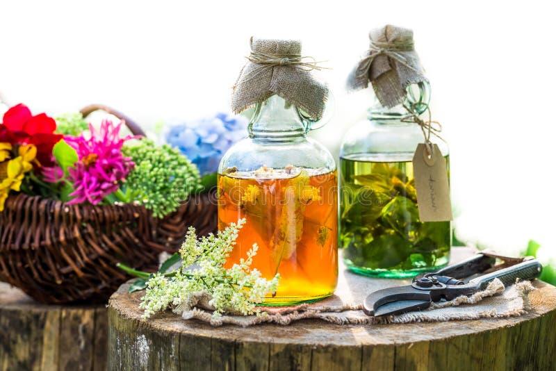Heilende Kräuter in den Flaschen als Naturheilverfahren im Garten lizenzfreies stockfoto