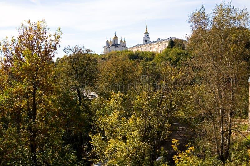 Heilige Annahme-Kathedrale von Vladimir steigt über die Bäume lizenzfreies stockfoto