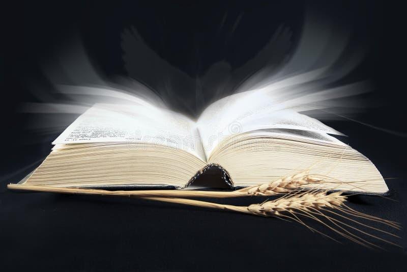 Heilige Bijbel op de zwarte stock afbeeldingen