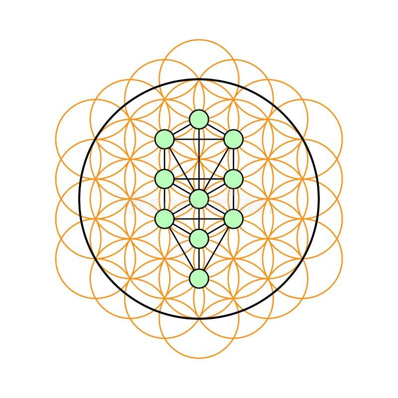 Heilige Geometrie Baum des Lebens in einer Blume des Lebens stock abbildung