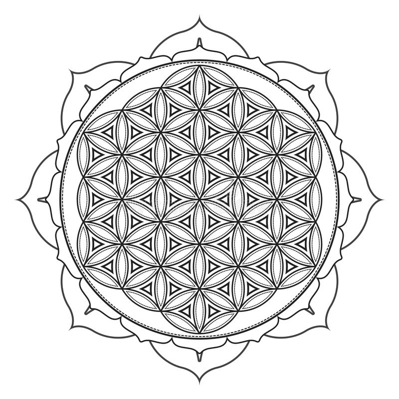 heilige Geometrieillustration der Vektormandala lizenzfreie abbildung