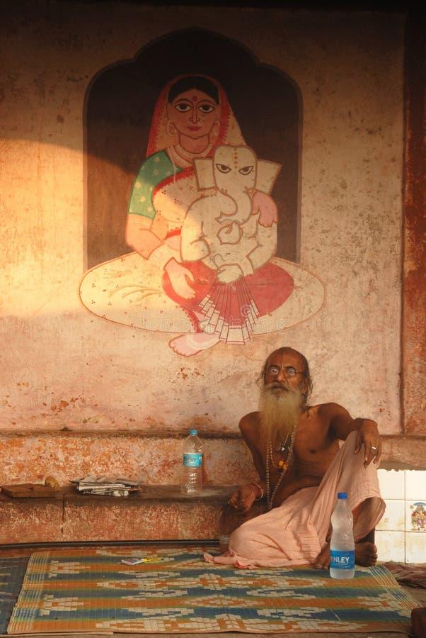 Heilige mens in India stock afbeelding