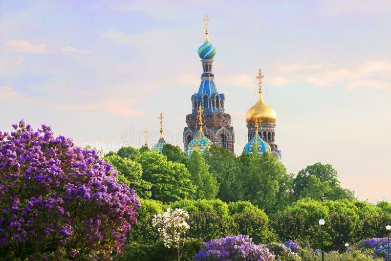 Heilige-Petersburg Rusland Mening van orthodoxe Kerk van de Verlosser op Bloed stock afbeeldingen