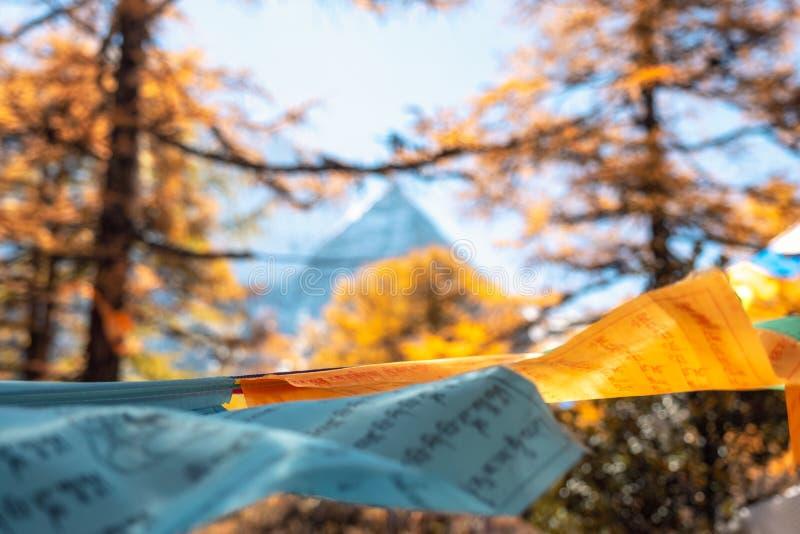 Heilige Xiannairi-berg met kleurrijke gebedvlaggen die in bos blazen royalty-vrije stock afbeelding