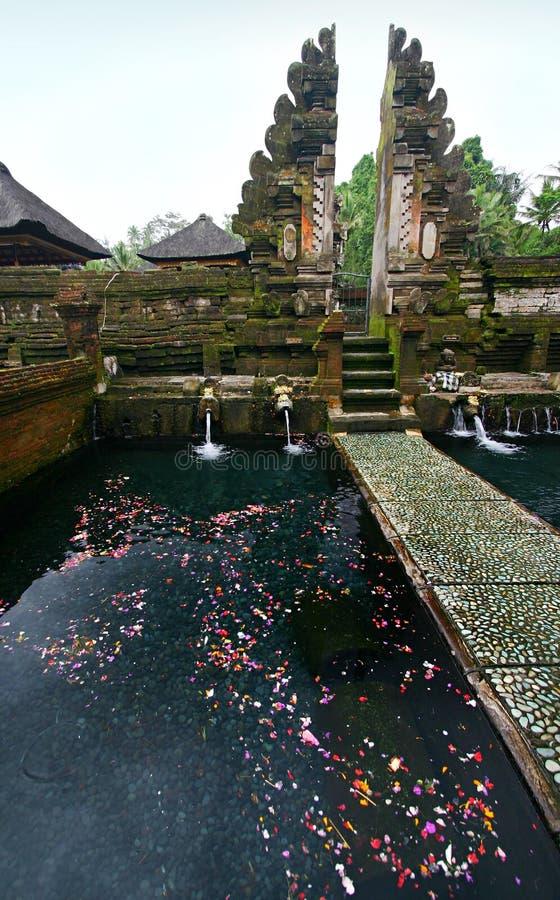Heiliger Frühling im Bali-Tempel lizenzfreies stockbild