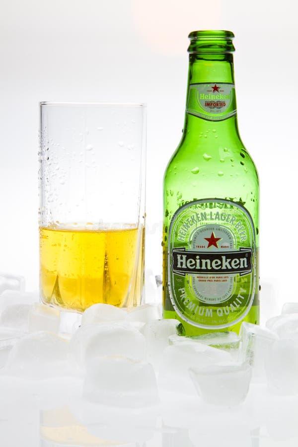 Heineken Beer. With glass and ice studio shot
