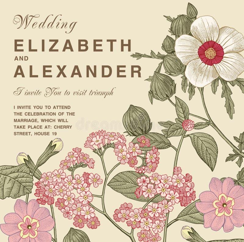 Heiratsdankeinladung Schöne realistische Blumenheliotropkarte Feld, Aufkleber Vektorstich Victorian Illustration stock abbildung