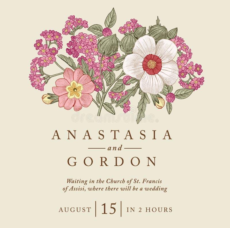 Heiratsdankeinladung Schöne realistische Blumenheliotropkarte Feld, Aufkleber Vektorstich Victorian Illustration vektor abbildung