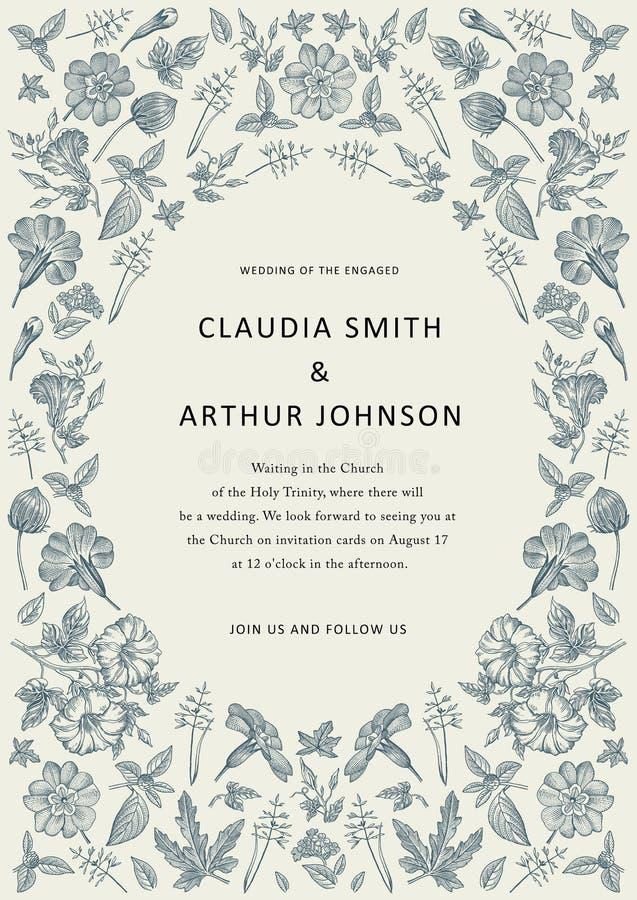 Heiratsdankeinladung Schöne realistische Blumenheliotropkarte Rahmen-Petunie Vektorstich Victorian Illustration lizenzfreie abbildung