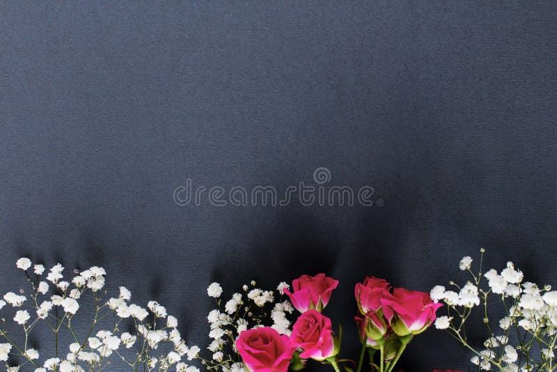Heiratsdunkler Hintergrund der roten Rosen der blüte lizenzfreie stockbilder