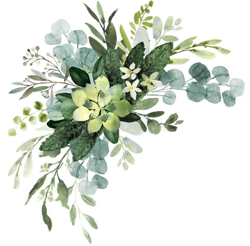 Heiratsgrünblumenstrauß Aquarellillustration mit eucalyptu lizenzfreie abbildung