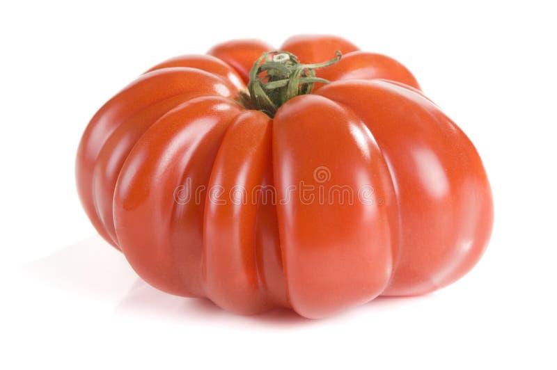 heirloom pomidor zdjęcia stock