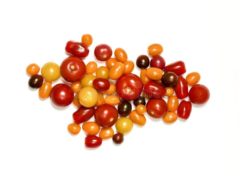 Heirloom pomidory na bielu fotografia royalty free