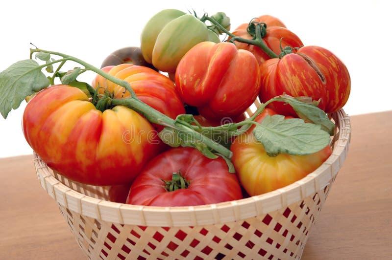 Heirloom-Tomaten lizenzfreies stockbild