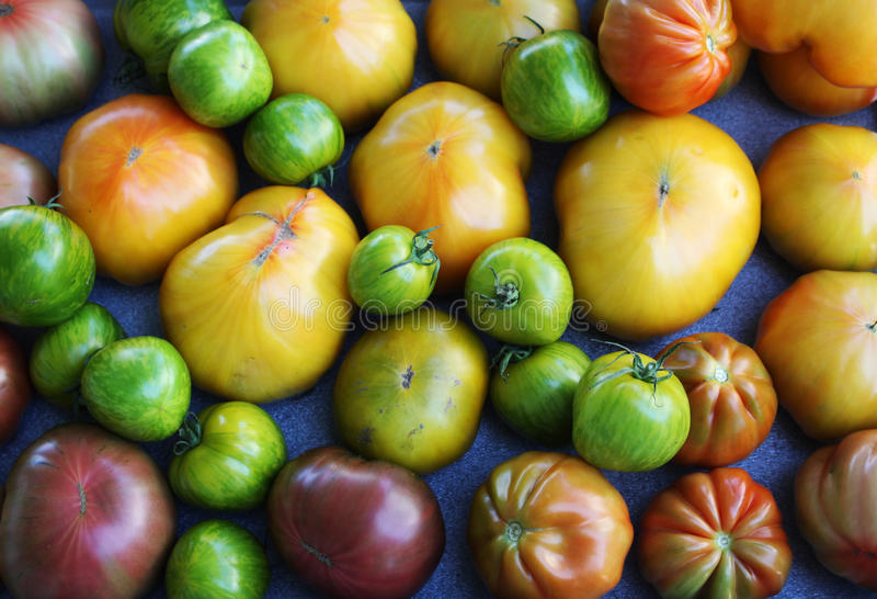 Heirloom Tomatoes. Close up of heirloom tomatoes on dislpaly and for sale. nd forale stock image