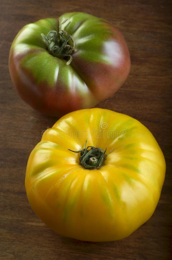 Heirloom tomatoes. Two luscious ripe heirloom tomatoes in vibrant colors of yellow, red and green stock photos