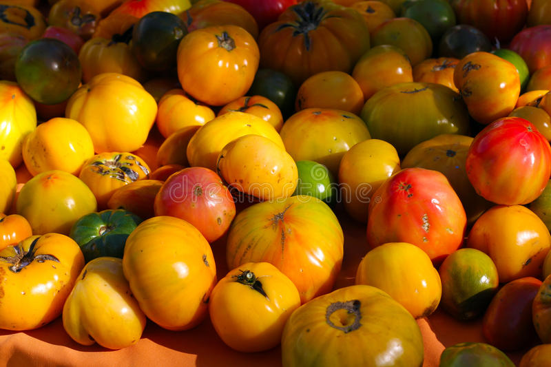 Heirloom Tomatoes. Pile of fresh organic heirloom tomatoes of all different colors stock images