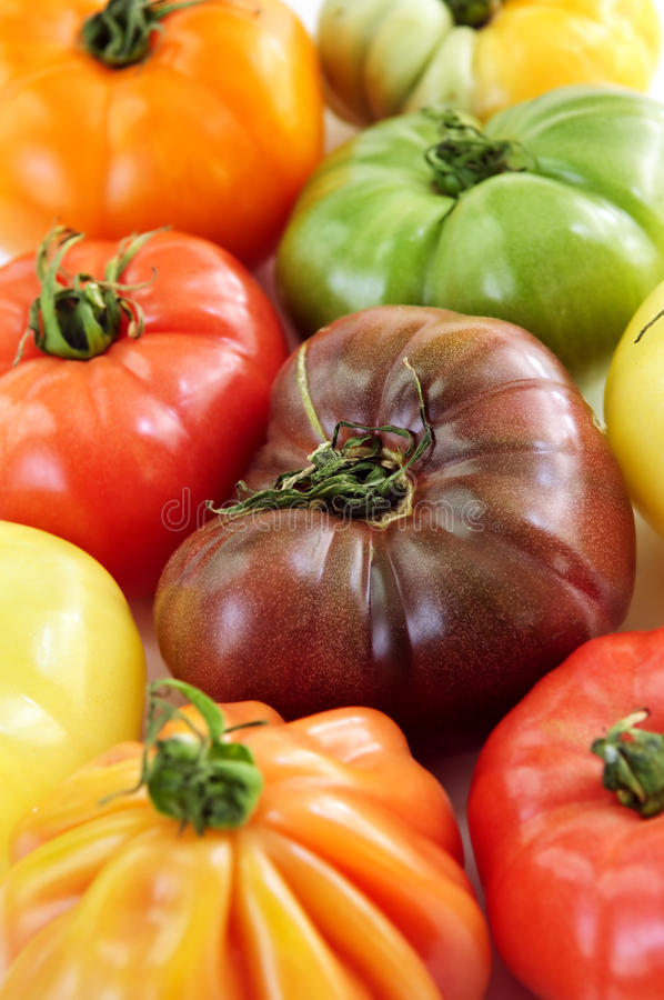 Heirloom tomatoes. Close up group of multi colored heirloom tomatoes royalty free stock images