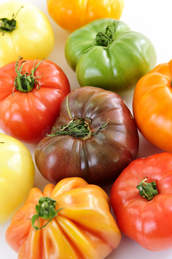 Heirloom tomatoes. Close up group of multi colored heirloom tomatoes stock photos