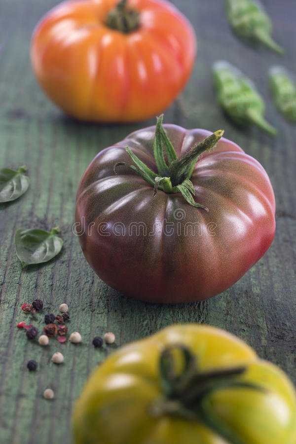 Heirloom tomatoes and basil royalty free stock photo