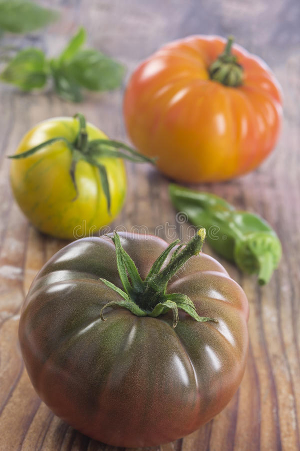 Heirloom tomatoes and basil stock images