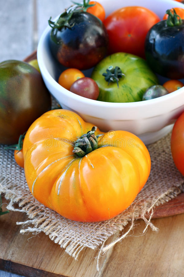 Heirloom Tomatoes in Bowl. Selection of large and small heirloom tomatoes royalty free stock photo