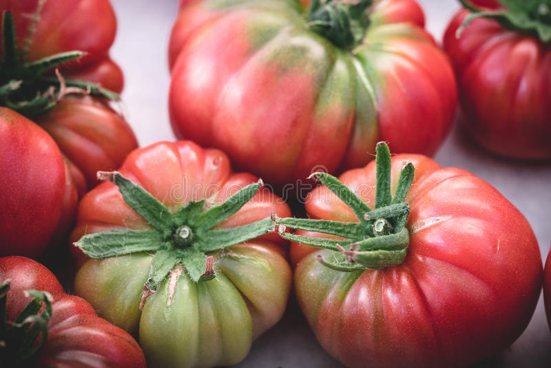Heirloom tomatoes in display at a market stock photos