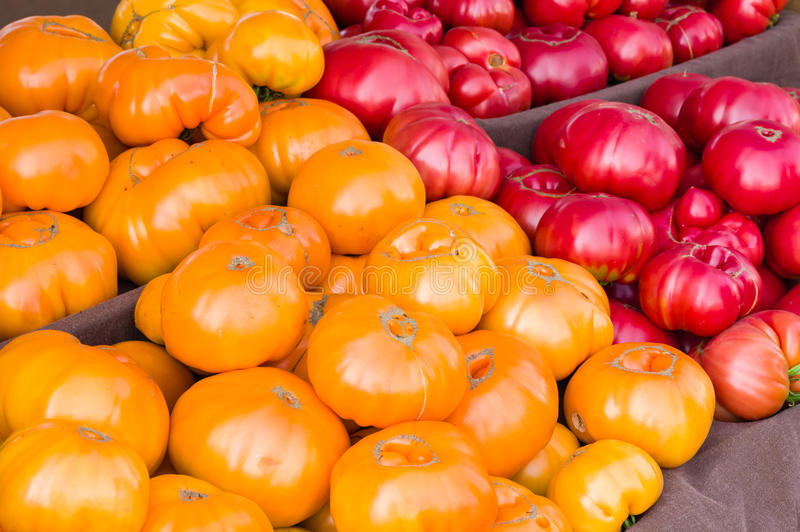 Heirloom tomatoes on display at the market. Yellow Heirloom tomatoes on display at the farmers market royalty free stock image