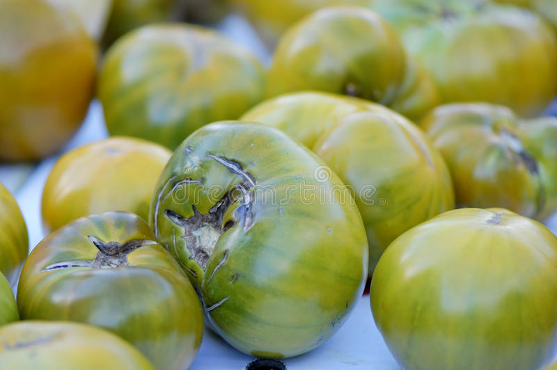 Heirloom Tomatoes. Green striped heirloom tomatoes for sale in the market stock photos