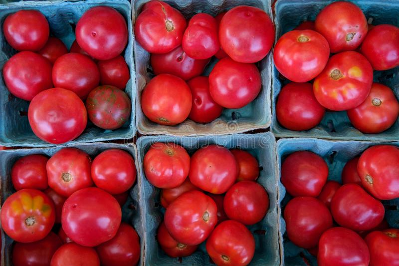 Heirloom Tomatoes. Heirloom or heritage mishapen historical tomatoes in blue baskets stock image